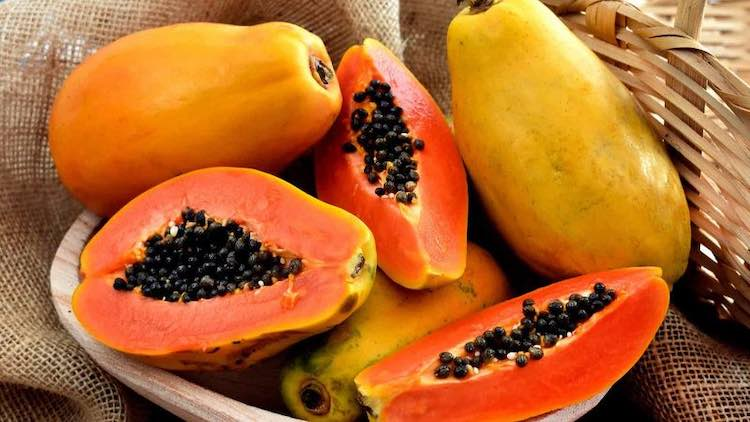 Papaya benefici proprieta